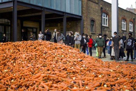 32 Ton carrot magu mahchah