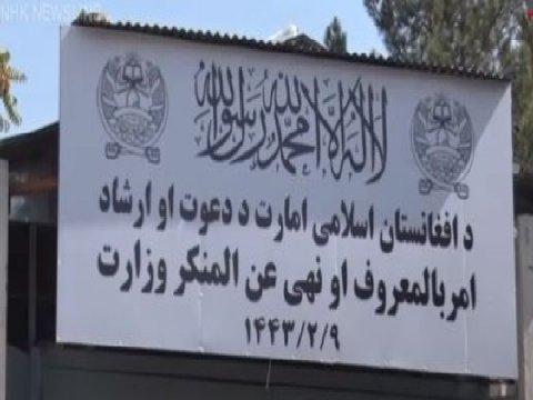Taliban in thunbulhi baalaa tho balaa ministry eh ufahdhaifi